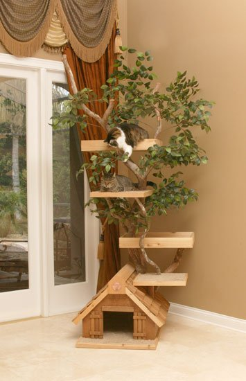 Arbre a chat en bois naturel et plantes - Arbre a chat bois naturel ...