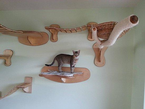 arbre-a-chat-sur-mesure Le mobilier pour chat GOLDTATZE: votre félin va en rêver!