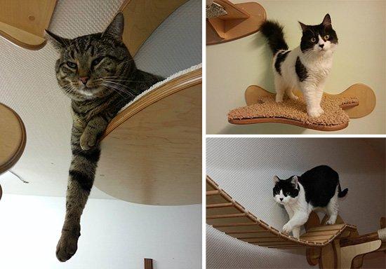 chat-avec-mobilier-en-sisal Le mobilier pour chat GOLDTATZE: votre félin va en rêver!