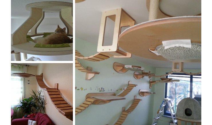 chat-perché Le mobilier pour chat GOLDTATZE: votre félin va en rêver!