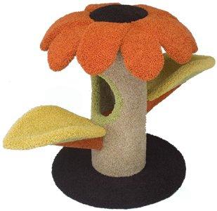 griffoir et arbre en sisal