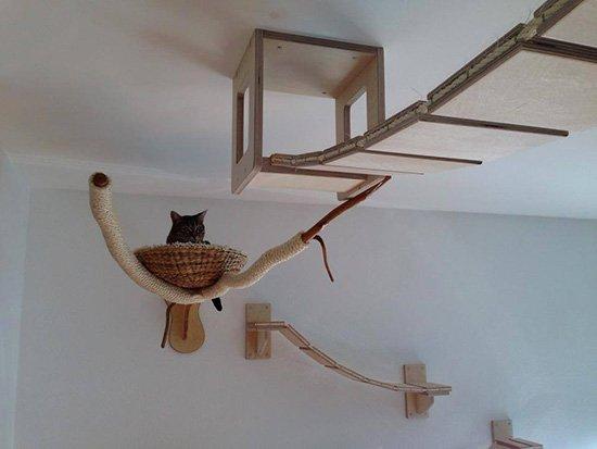 le-chat-séclate-dans-son-aire-de-jeux Le mobilier pour chat GOLDTATZE: votre félin va en rêver!