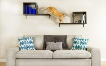 ARBRE A CHAT: quelles solutions pour les petits appartements ?