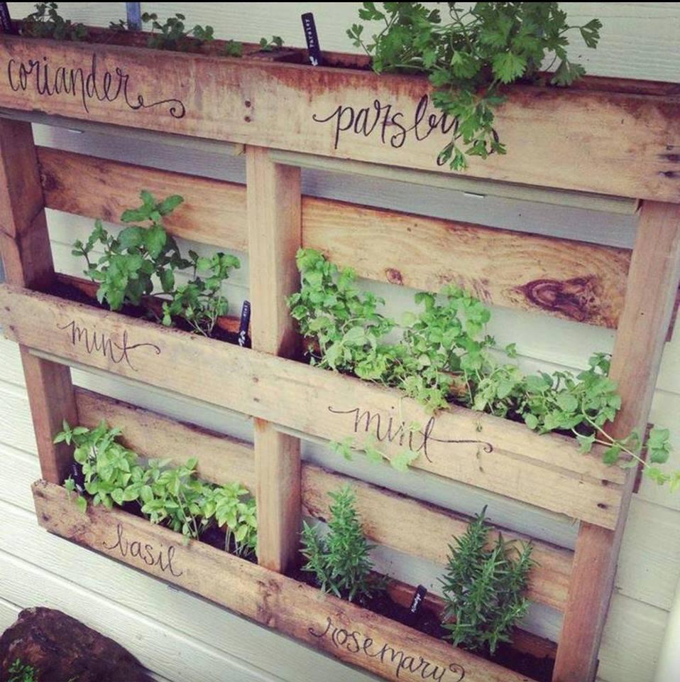 crédit photo© Aménagement du jardin .net