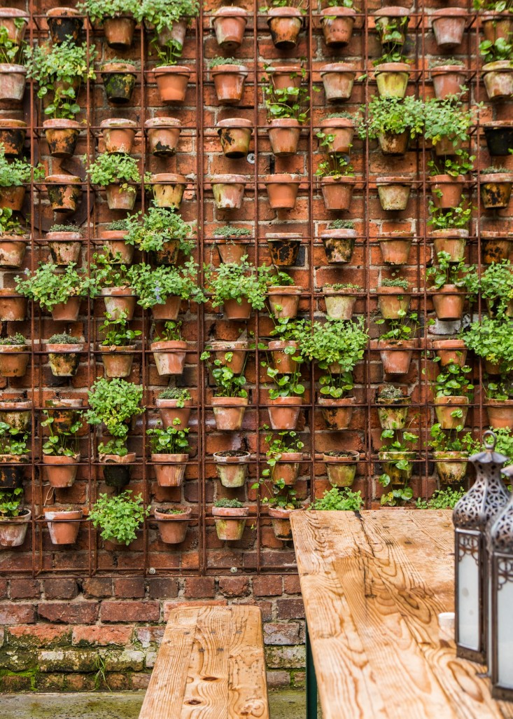 vertical-garden-wall-larritt-evans-3