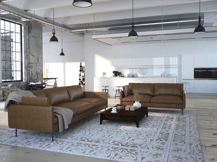 salon design avec sofas en cuirs marrons