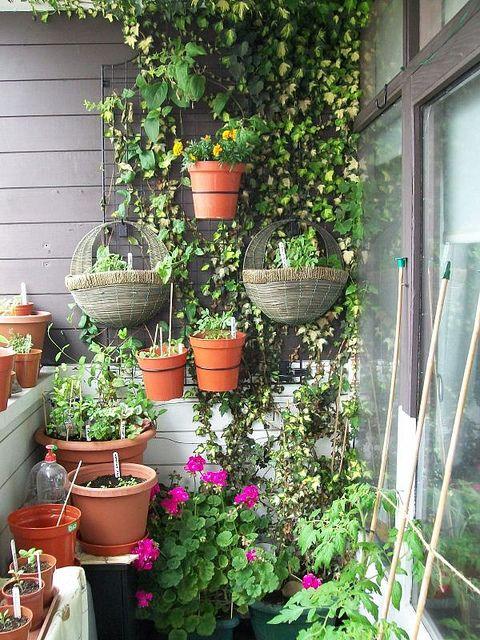 Comment Faire Un Mur Vegetal Top Lyndsey Du Blog What You Sow Nous Montre Comment Recycler Ses