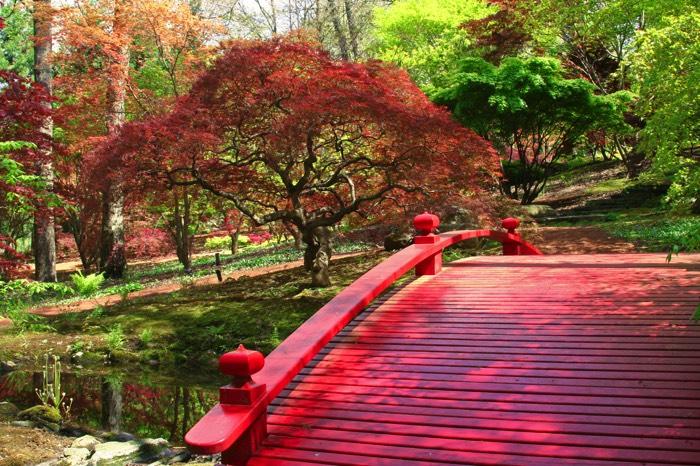 arborer son jardin best jardin de paysagiste arborer son jardin with arborer son jardin. Black Bedroom Furniture Sets. Home Design Ideas