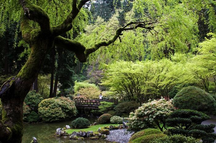 arborer son jardin amnagement de jardin accorder ses massifs son jardin with arborer son jardin. Black Bedroom Furniture Sets. Home Design Ideas