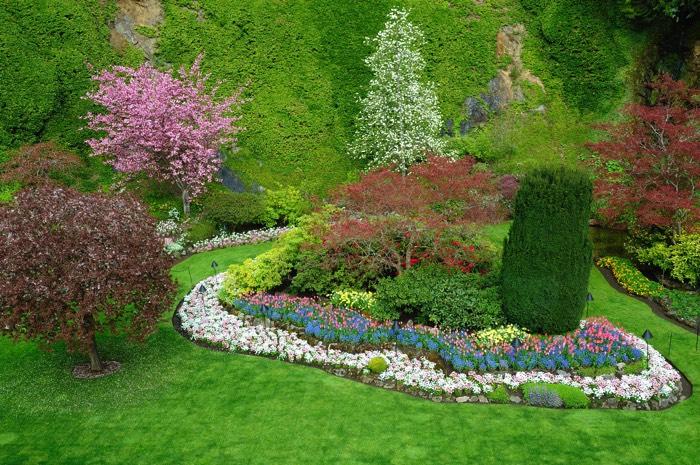 d co d 39 une all e de jardin 42 id es nos conseils pour embellir son jardin. Black Bedroom Furniture Sets. Home Design Ideas
