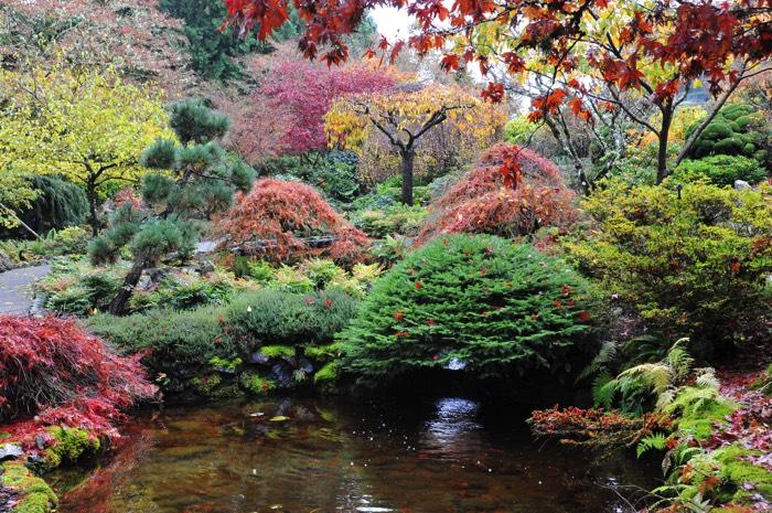 Créer un jardin paysager : 43 idées et photos inspirantes